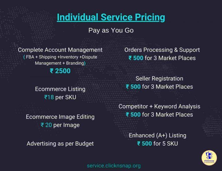 Clicknsnap_org - Ecom Individual service Plan